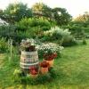 perspective-a-lentree-sur-le-jardin.jpg