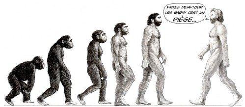 """Préhistoire, évolution de """"l'Homme"""", le grand bluff ! ouf, on ne descend pas du singe !"""