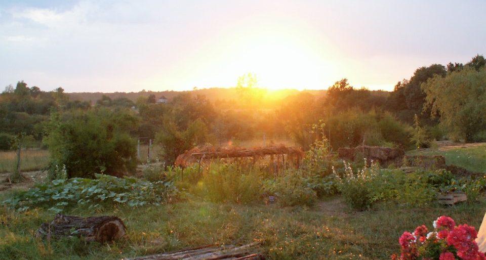 Permalien vers:Second jardin en Dordogne