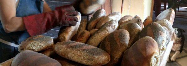 Le retour des paysans boulangers